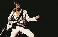 Elvis il re del rock