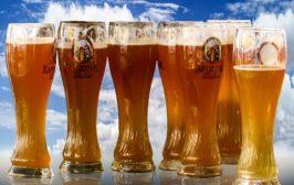 Classificazione della birra